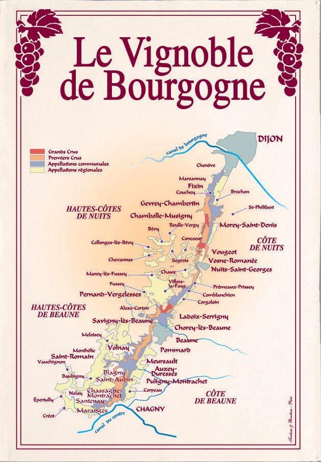 Les vignobles - Torchon vignoble de bourgogne