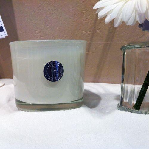 Classique  -Bougie pot blanc Rose Ancienne  40h